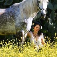 Gelbe Wiese _3