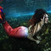 Sirene unter Wasser_1